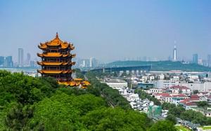 新型コロナウイルスは桁違い、中国の成長率は年5.4%に減速か=大和総研の見通し