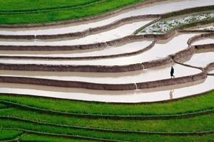 似た部分が多い日本とベトナム、地理的環境でより優れているのはどちら?=中国メディア