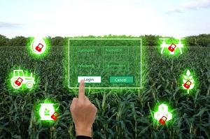 中国の農業で「SF感」が急上昇! 無人機での農作業から「豚の顔認識」まで=中国メディア