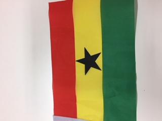 【コラム】ガーナ共和国との初仕事