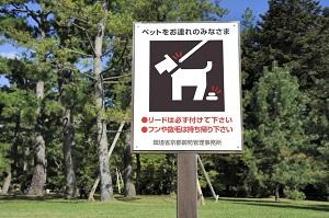 日本の秩序や治安がいいのは、街に「あるもの」がたくさん存在するからだ=中国メディア
