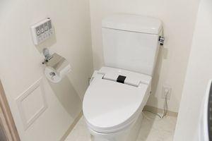 日本のトイレで困惑「使用済みの紙はどうすれば良いのか・・・まさか持ち帰れというのか」=中国報道