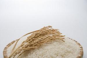 国土面積の狭い日本が、広大な中国に穀物を輸出できるのはなぜ?=中国メディア