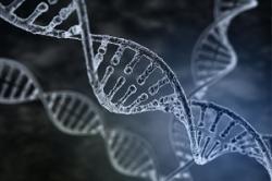 日本人は古代中国人から枝分かれした民族? 「固有のDNAを持っていた」=中国メディア