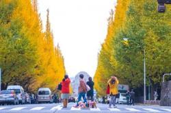 日本を訪れた中国人が「帰国後にしきりに日本を称賛するようになる理由」=中国メディア