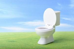 洋式トイレって不潔じゃないの? 日本のトイレは「洋式ばかり」と首をかしげる中国人