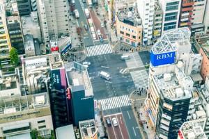 一体何が魅力なのか・・・中国人が日本に住みたいと思う理由とは=中国報道