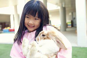 中国人が日本の学校教育に対して「背筋が凍る」と述べた理由=中国