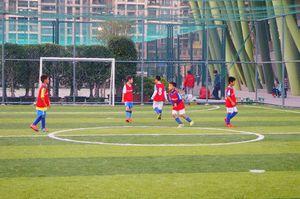 なぜだ! 日韓サッカーは強化に成功したのに「中国はなぜ結果が出ないのか」