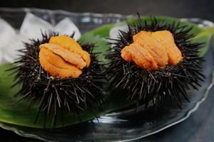 「日本人はよく生で食べられるなぁ」 中国人が敬遠する食材とは=中国メディア