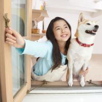 日本人に「中国人はイヌを飼う資格なし」と言われたが・・・=中国メディア