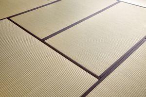 畳に憧れ・・・でも畳が「中国の住宅に合わない理由」=中国メディア