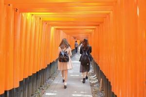 新型コロナで中国人観光客が激減、日本の観光地が「本来の姿」を取り戻した=中国