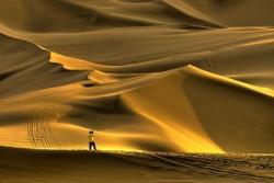 感謝と敬意・・・中国の砂漠緑化に貢献した、4人の日本人たち=中国メディア