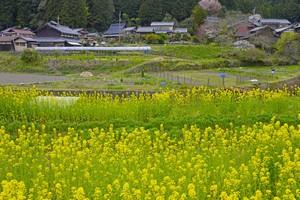 これが日本の田舎なのか・・・わずか3泊しただけで「常識が覆された」=中国報道