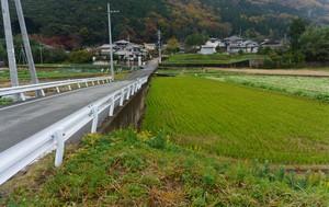 タダ同然の家もある日本、買い手がつかないのは一体なぜ?=中国メディア