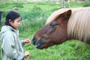 牛小屋の掃除をする日本の6歳児から感じる、「苦労を味わう」教育=中国メディア