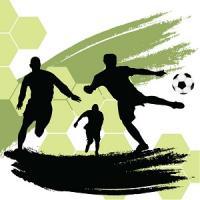 中国サッカー、カタールW杯本戦出場の確率は「80%」=中国メディア