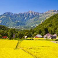 ああ、良いなぁ・・・日本の農村は「静かで穏やか」で羨ましい=中国