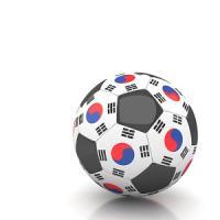 韓国代表はW杯で輝きを放った「ドイツに勝ったという栄誉を得た」=中国