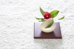 愛ちゃんは美宇の「花瓶」 6月7日の中国記事トピックス