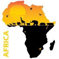 日本がアフリカ開発会議で中国を「暗にけん制した」と不満示す=中国メディア