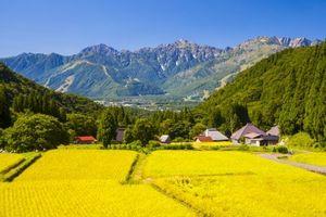 日本の秋は爽やかで美しい! 日本には秋に関する言葉がたくさんある! =中国メディア