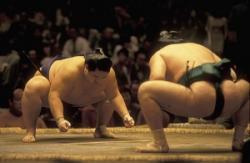 日本の国技「相撲」 なぜ力士はひげを伸ばしてはいけないのか?=中国メディア
