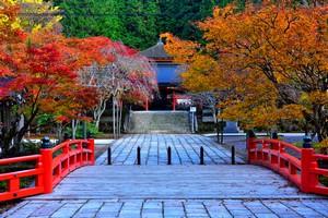 日本の「国家イメージの良好さ」を認める中国ネット民が抱える「疑問」