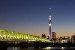 韓国に行かなくなった中国人観光客は、日本にやってくるか? =中国メディア