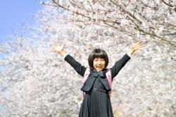 「桜」に合わせたのかと思ってた!? 日本の入学や入社はなぜ4月?=中国