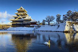 休暇のたびに「友人の誰かが日本旅行の写真をアップする」、なぜここまで・・・=中国