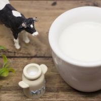 日本のローソンでホットミルク・・・中国人観光客「われわれの胃は救われた!」と大喜び?