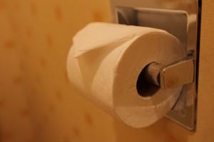 中国人が日本のトイレで使用後のトイレットペーパーを巡って感じる戸惑いとは=中国
