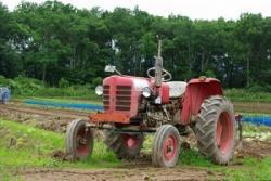 日本の現代化農業を見ていると、農業が持つ潜在力の大きさを感じずにはいられない=中国メディア