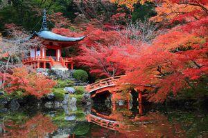 日常生活に荘厳さを与える、日本人の細かい「こだわり」とは=中国メディア