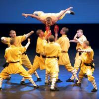 日本の「少林寺拳法」と中国の「少林拳」は同じ武術? ヒントは「ラーメンと餃子」に隠されている=中国報道