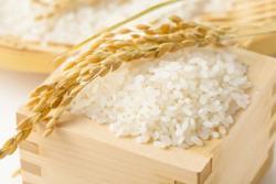 日本産の米はなぜこんなに高い? 中国産に比べて10倍もの値=中国報道