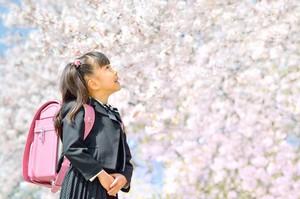 日本はなぜ「春」が入学の季節なの? 世界的には日本が少数派=中国メディア