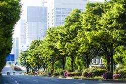 日本はどうやってイノベーション環境を保っているのか=中国メディア
