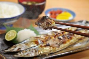 日本人はなぜ中国人より魚を好んで食べるのか=中国メディア