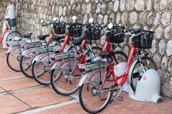 中国で大人気の電動バイクが日本で流行らない、「当たり前」な理由=中国メディア