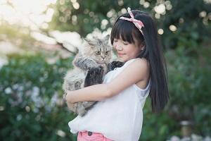 日本のペットは世界一幸せだと思う、だって死んだあとも・・・=中国メディア