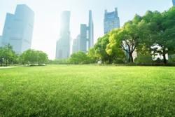 上海を訪れた日本人が、「今まで騙されていた」と思ったこと=中国メディア