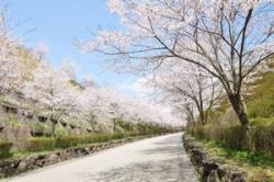 日本の街は、あなたが想像するよりも美しい=中国メディア