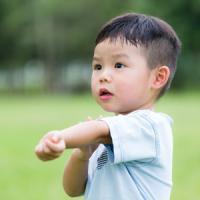 「ヒアリ」だけじゃない! 日本でも吸血虫「マダニ」被害に注意を 7月11日の中国記事トピックス