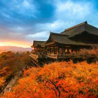 もし一生に一度しか日本に行けないなら・・・絶対に「秋の京都」に行く=中国報道