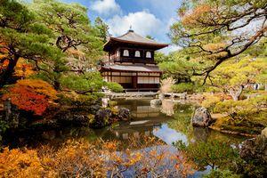 日本の「失われた20年」は見せかけに過ぎない! 中国人よ、目を覚ませ!