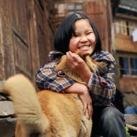 「柴犬」人気の影で、そっくりな中国原産の「中華田園犬」が全く脚光を浴びない理由=中国報道