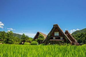 日本に存在する「中国人の固定概念を覆す農村」・・・中国の素晴らしいモデルケースに=中国